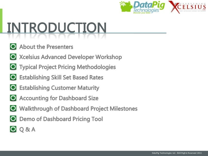 About the PresentersXcelsius Advanced Developer WorkshopTypical Project Pricing MethodologiesEstablishing Skill Set Based ...