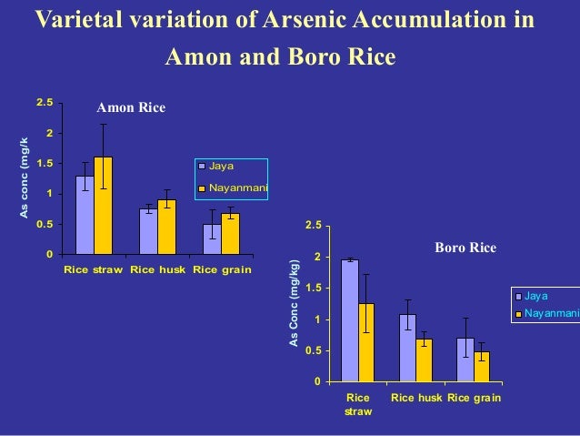 Effect Of Arsenic In Environment  Plant Humans