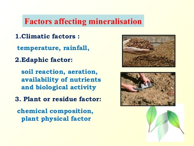 Plant Chemical Components : Effect of chemical compotion plant residues on nitrogen