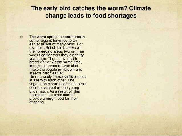 the impact of climate change on the migration of birds How will climate change effect animals, birds and  climate change - effects on  spawn and water birds which rely on wetland sites for migration are at threat.