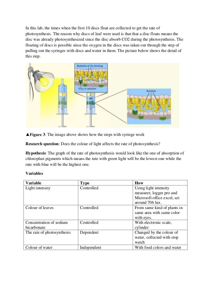 How does light wavelength affect the reaction of photosynthesis van helmont photosynthesis equation