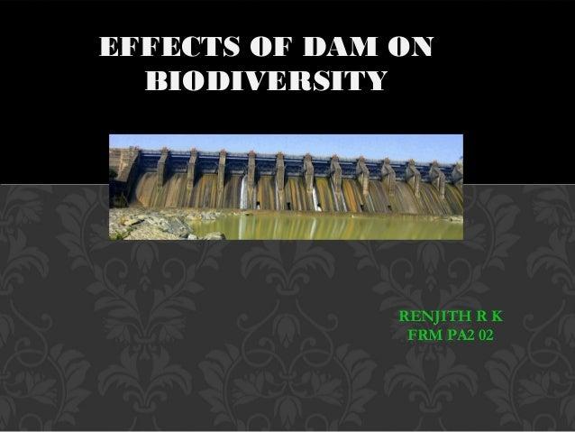 EFFECTS OF DAM ONBIODIVERSITYRENJITH R KFRM PA2 02