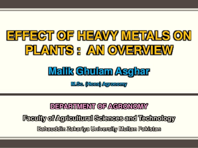 EFFECT OF HEAVY METALS ON PLANTS : AN OVERVIEW Malik Ghulam Asghar M.Sc. (Hons) Agronomy DEPARTMENT OF AGRONOMY Faculty of...