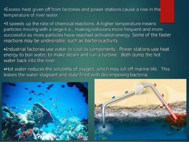 the impact of pollution on marine life Abstract the ocean, the origin of life, the total area of about 360 million square  kilometers,  253: impacts of marine heavy metal pollution on human beings.