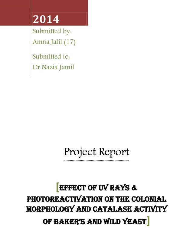 Project Report 2014 Submitted by: Amna Jalil (17) Submitted to: Dr.Nazia Jamil [EFFECT OF UV RAYS & PHOTOREACTIVATION ON T...
