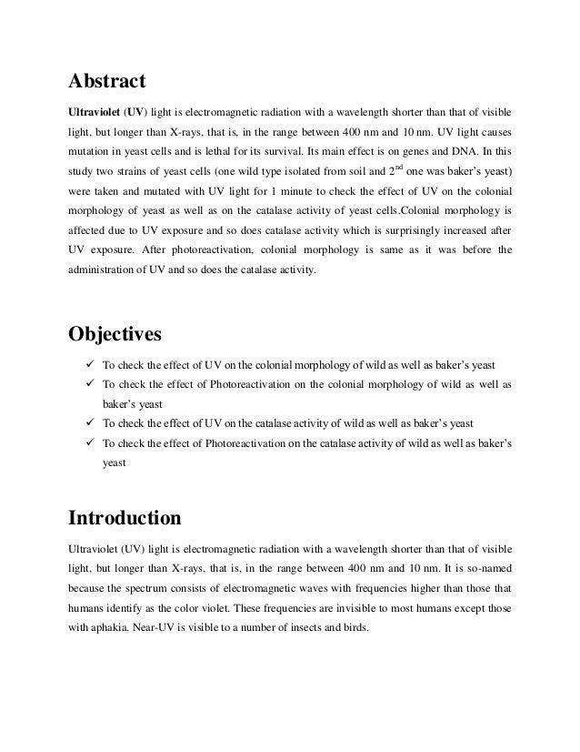 Effects of uv rays essay