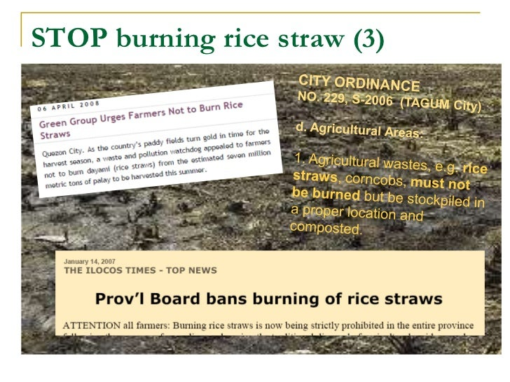 effects of rice straw burning Emissions from crop/biomass residue burning risk to incorporated with the effect of levoglucosan in ambient aerosols from rice straw burning and.