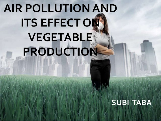 AIR POLLUTION AND ITS EFFECT ON VEGETABLE PRODUCTION SUBI TABA