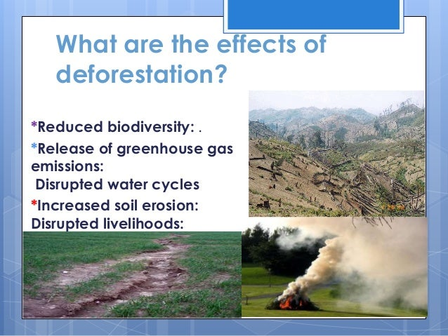 Effects of deforestation on climate