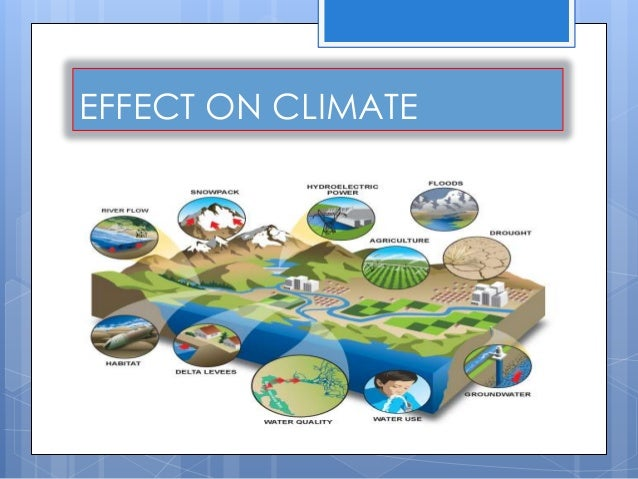 the effect of deforestation on the Learning objectives students will design and create minecraft worlds illustrating the before and after effects of deforestation from 1990 or prior and 2016 in an area.