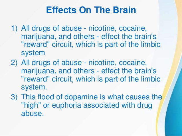 drug effects on the brain essay A drug is any substance  they are also commonly used to regain brain function lost during aging  other designer drugs mimic the effects of psychoactive drugs.