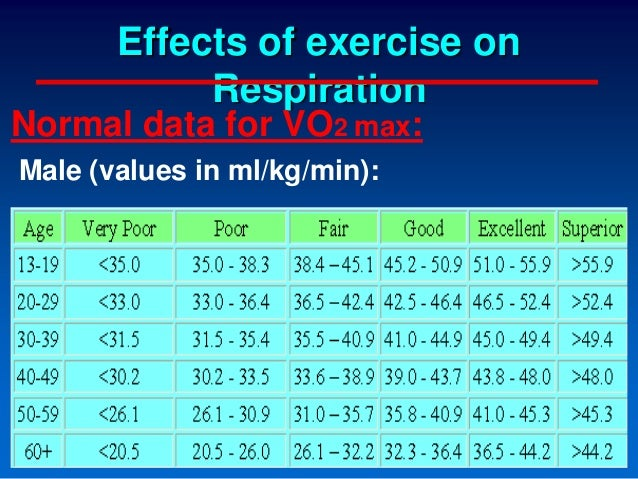 effects of exercise on cvs  u0026 resp s