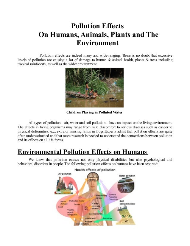 Pollution Effects On Humans, Animals, Plants and The ...Air Pollution Effects On Animals And Plants