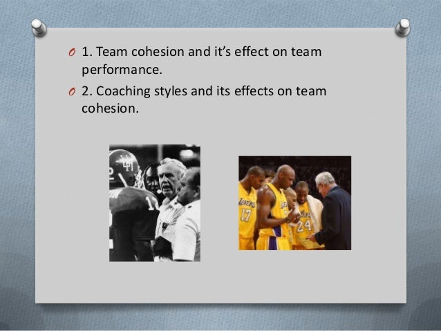 effect of team cohesion on performance Research article global virtual team performance: the effect of coordination  effectiveness, trust, and team cohesion ravi paul, john r.