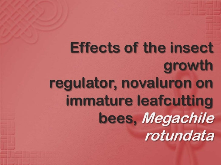 Effects of the insect                 growthregulator, novaluron on  immature leafcutting       bees, Megachile           ...