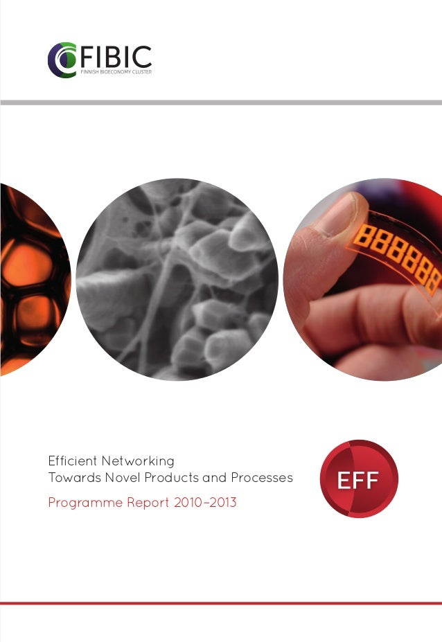 Ohjelmatunnukset  Efficient Networking Towards Novel Products and Processes Programme Report 2010–2013