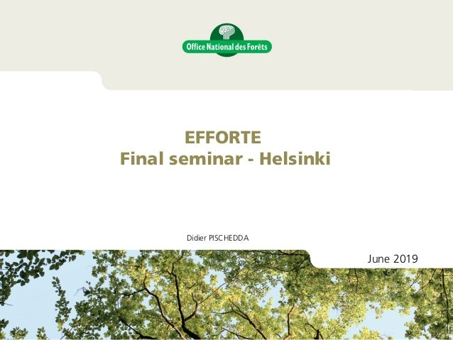 Didier PISCHEDDA EFFORTE Final seminar - Helsinki June 2019