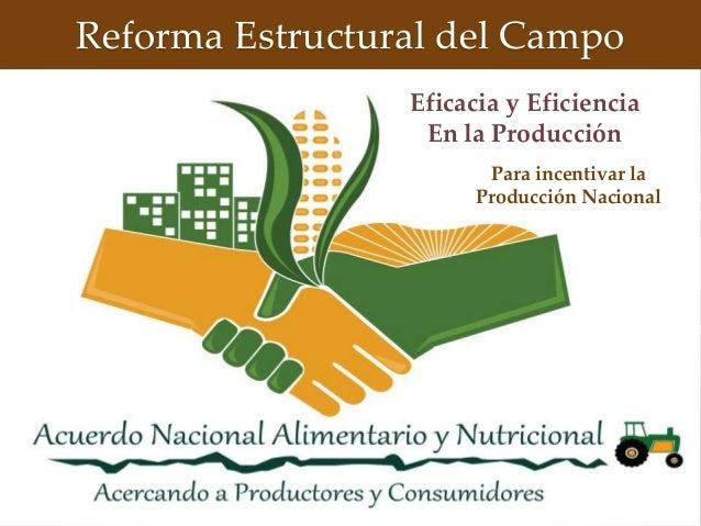 Reforma Estructural del Campo Eficacia y Eficiencia En la Producción Para incentivar la Producción Nacional