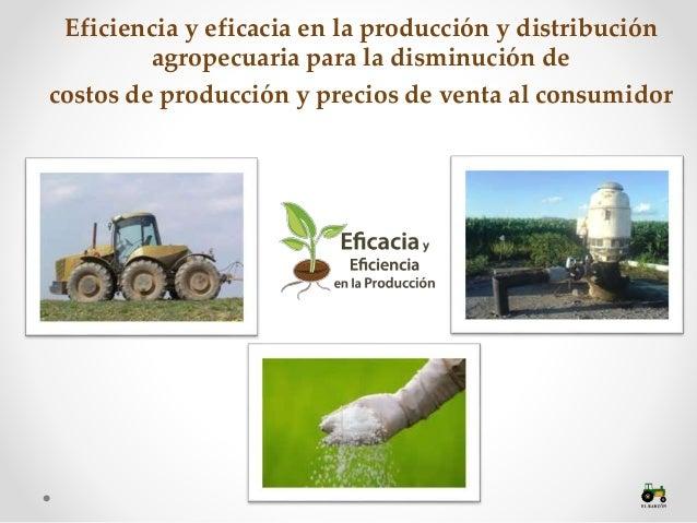 Reforma al Campo-Eficiencia productiva en el Campo Mexicano Slide 2