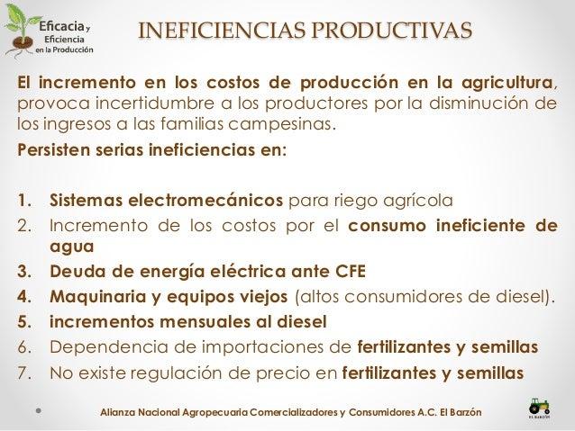 Reforma al Campo-Eficiencia productiva en el Campo Mexicano Slide 3