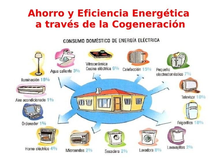 Ahorro y Eficiencia Energética a través de la Cogeneración