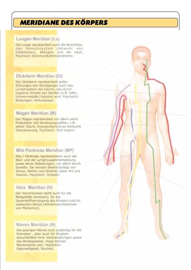 Fein Anatomie Nieren Lage Galerie - Anatomie Von Menschlichen ...