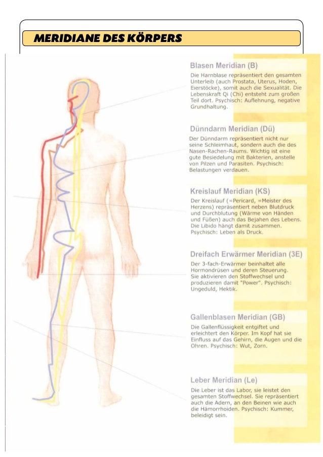 Wunderbar Körper Des Uterus Galerie - Menschliche Anatomie Bilder ...