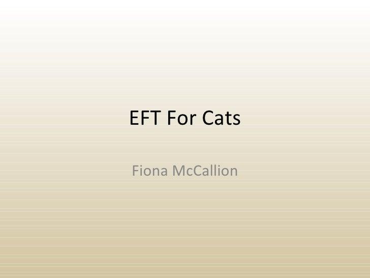 EFT For Cats Fiona McCallion