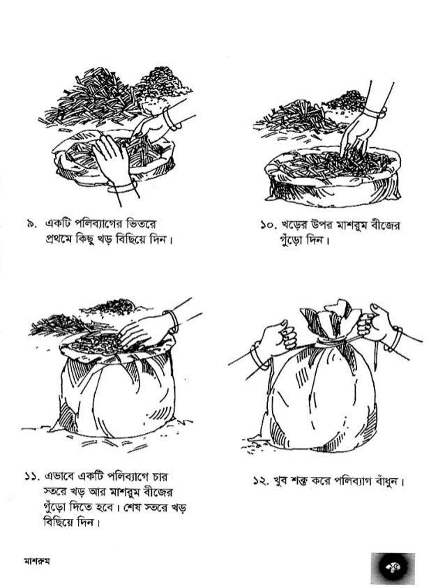 Mushrum book- মাশরূম চাষ পদ্ধতি