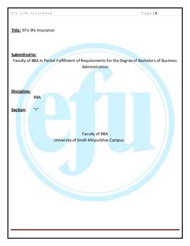 Efu Complete Internship Report