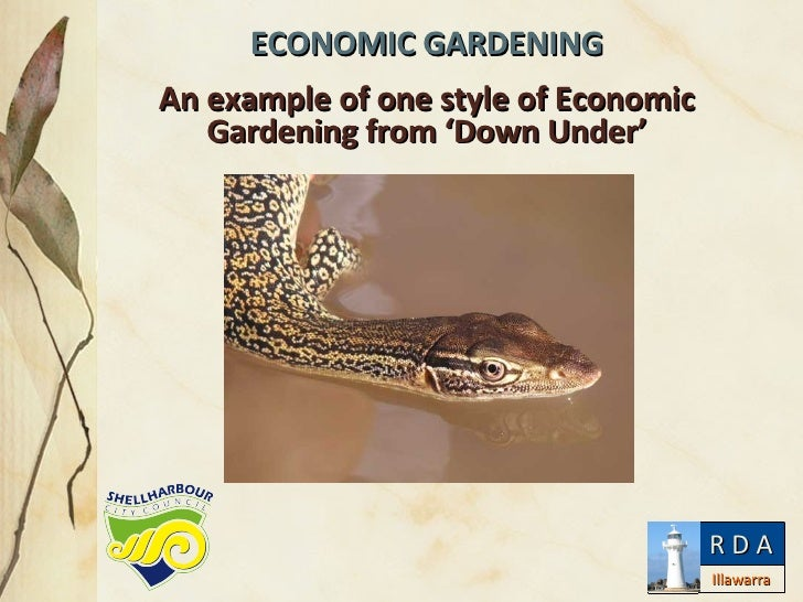 ECONOMIC GARDENING An example of one style of Economic Gardening from 'Down Under' Illawarra R D A