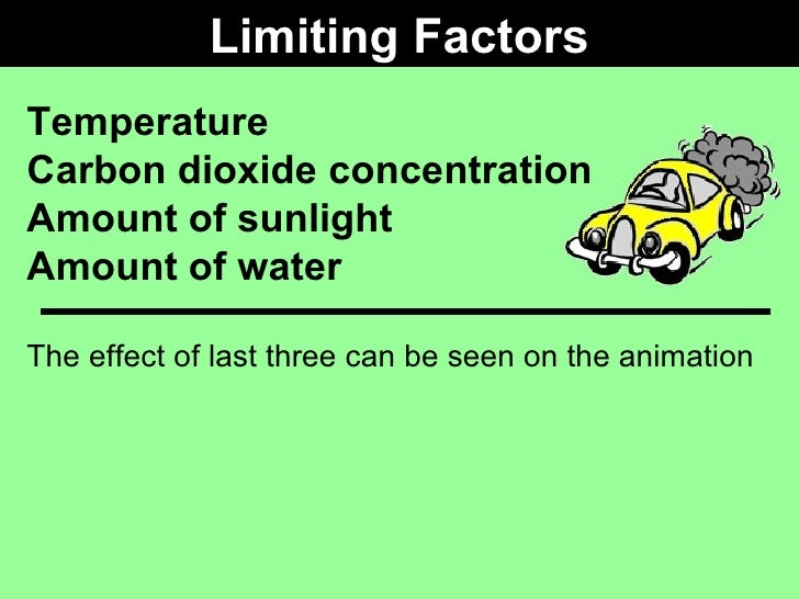 Limiting Factors Examples Biology