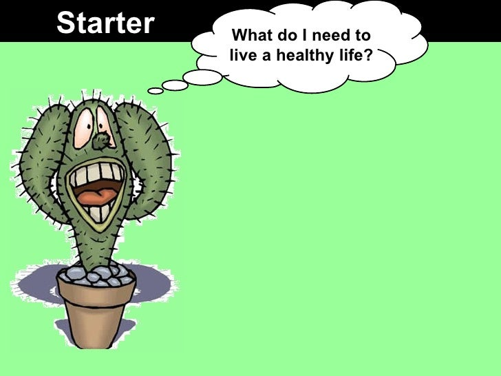 Starter What do I need to live a healthy life?