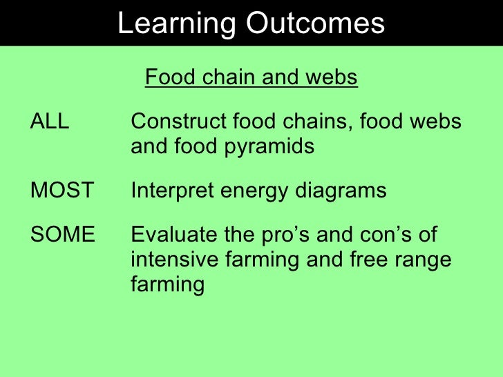 Gcse Biology Food Chains Webs And Pyramids