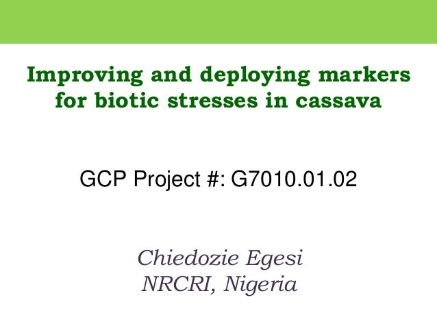 Improving and deploying markers for biotic stresses in cassava GCP Project #: G7010.01.02 Chiedozie Egesi NRCRI, Nigeria