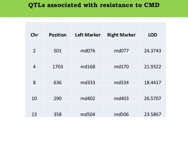 QTLs associated with resistance to CMD