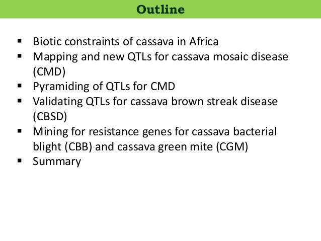  Biotic constraints of cassava in Africa  Mapping and new QTLs for cassava mosaic disease (CMD)  Pyramiding of QTLs for...