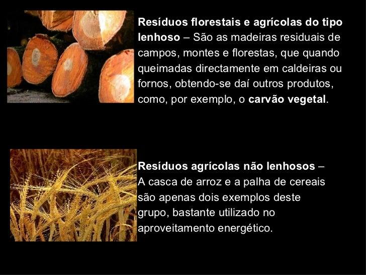 Resíduos florestais e agrícolas do tipo lenhoso  – São as madeiras residuais de campos, montes e florestas, que quando que...