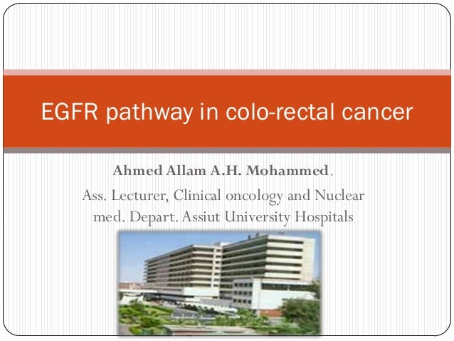 EGFR pathway in colo-rectal cancer       Ahmed Allam A.H. Mohammed.   Ass. Lecturer, Clinical oncology and Nuclear    med....