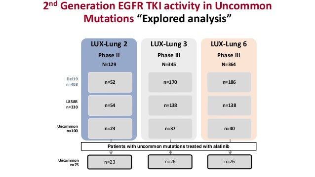 First Line Therapy In Egfr Mutant Advanced Metastatic Nsclc