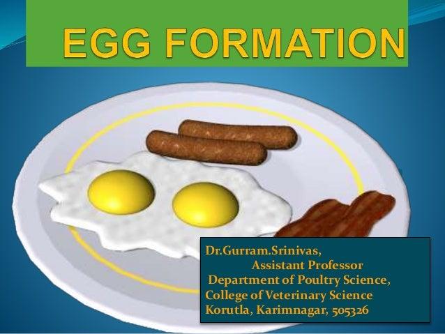 Eggcellent!!!! Dr.Gurram.Srinivas, Assistant Professor Department of Poultry Science, College of Veterinary Science Korutl...
