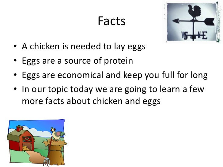 Facts<br />A chicken is needed to lay eggs <br />Eggs are a source of protein<br />Eggs are economical and keep you full f...