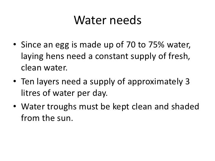 Water needs<br />Since an egg is made up of 70 to 75% water, laying hens need a constant supply of fresh, clean water. <br...