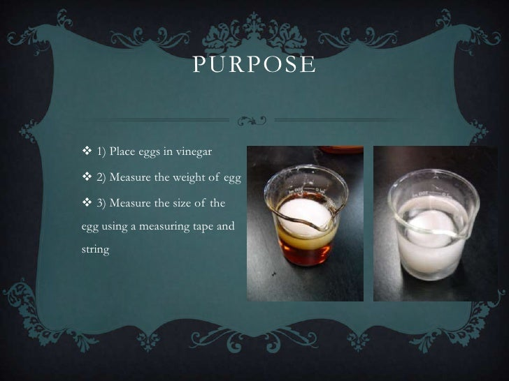 osmosis egg experiment Egg osmosis lab experiment this experiment would show you some crucial biological process that plays an important role in our daily activities osmosis and diffusion the setup for the egg osmosis experiment is quite similar to that of the bouncy egg experiment.