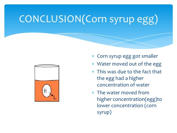 Egg osmosis project