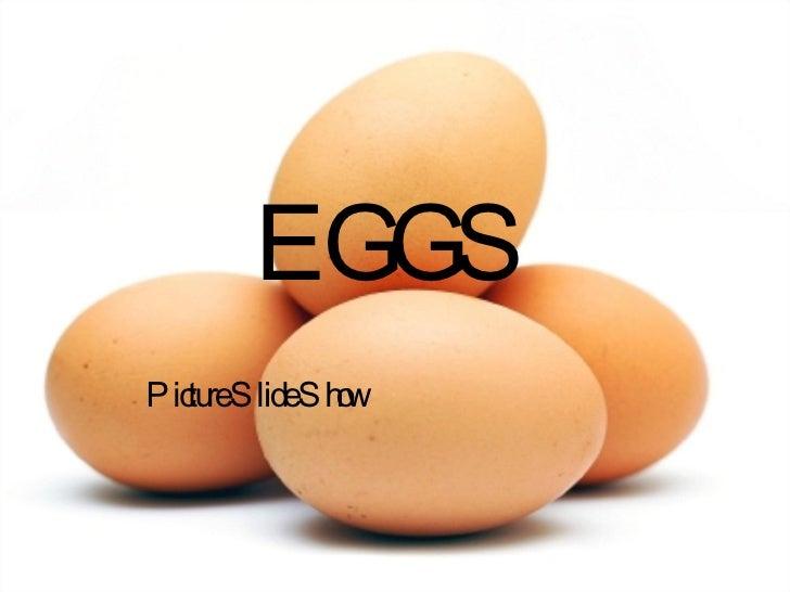 EGGS Picture Slide Show
