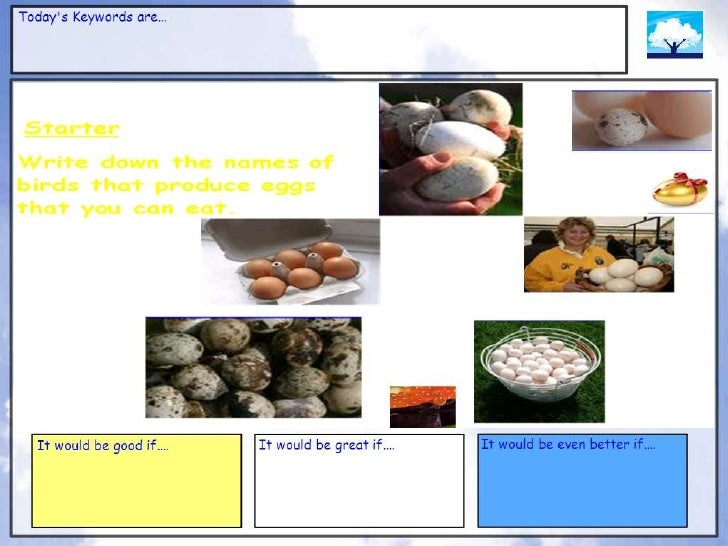 Eggs powerpoint for gcse