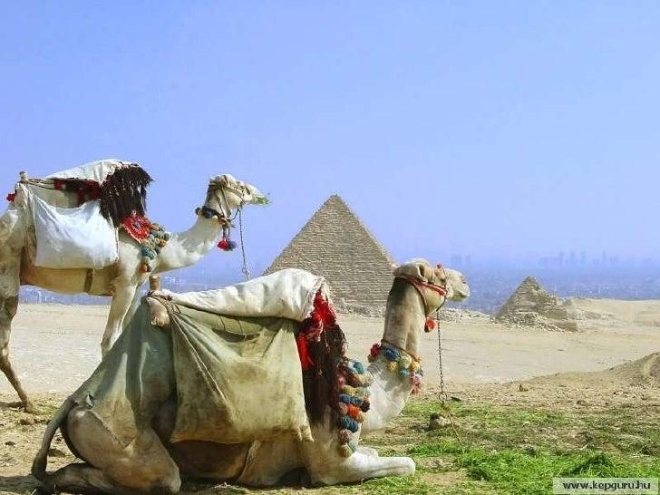 Egipte Terra De Faraons Slide 18