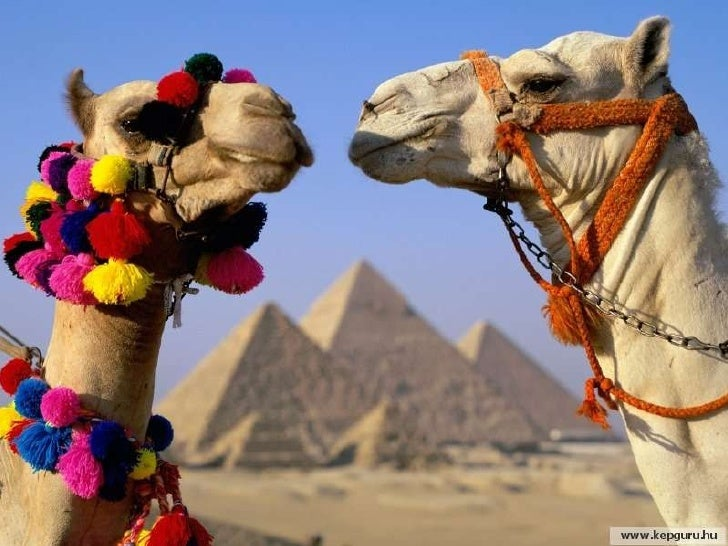 Egipte Terra De Faraons Slide 5