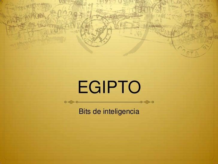 EGIPTOBits de inteligencia